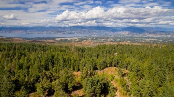View from 4390 Ruth Road at myra canyon , listed by Domeij and Associates