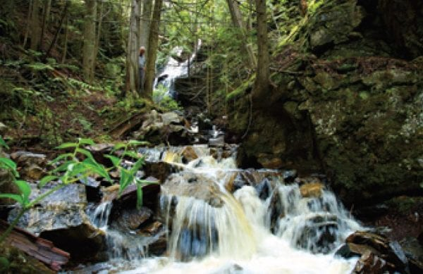 Waterfall on 80 acres listed by Domeij and Associates southeast Kelowna 4390 Ruth Road